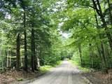 Lot 4 Dyer Road - Photo 6