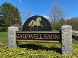 40 Caldwell Farm Road - Photo 20