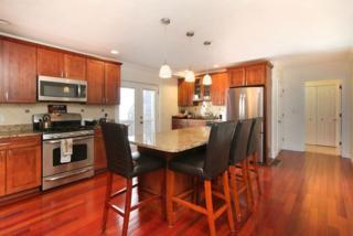 81 F Street #1, Boston, MA 02127 (MLS #72128790) :: Goodrich Residential