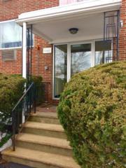 3 Albert Dr #9, Woburn, MA 01801 (MLS #72135292) :: Goodrich Residential