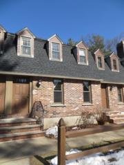 199 Wellman Ave. #199, Chelmsford, MA 01863 (MLS #72135300) :: Goodrich Residential
