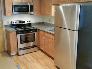 73 River Street 4A, Cambridge, MA 02139 (MLS #72153334) :: Goodrich Residential