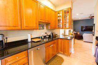 256 Athens St #3, Boston, MA 02127 (MLS #72153449) :: Goodrich Residential