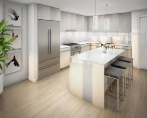45 West Third Street #209, Boston, MA 02127 (MLS #72154772) :: Goodrich Residential