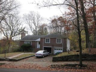 156 Otis Street, Newton, MA 02465 (MLS #72170861) :: Vanguard Realty