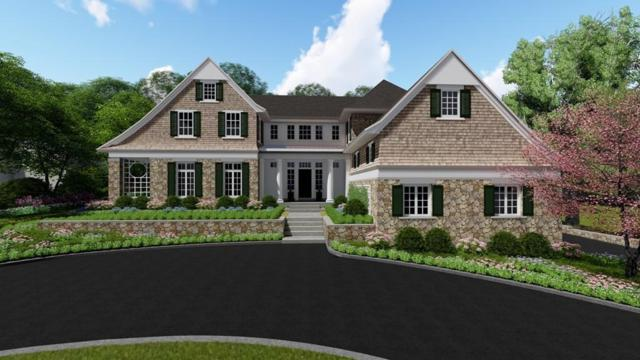 111 New Forest Ave, Newton, MA 02465 (MLS #72125411) :: Goodrich Residential