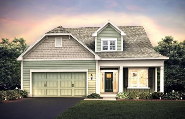 9 Hood Drive #187, Andover, MA 01810 (MLS #72171287) :: Westcott Properties