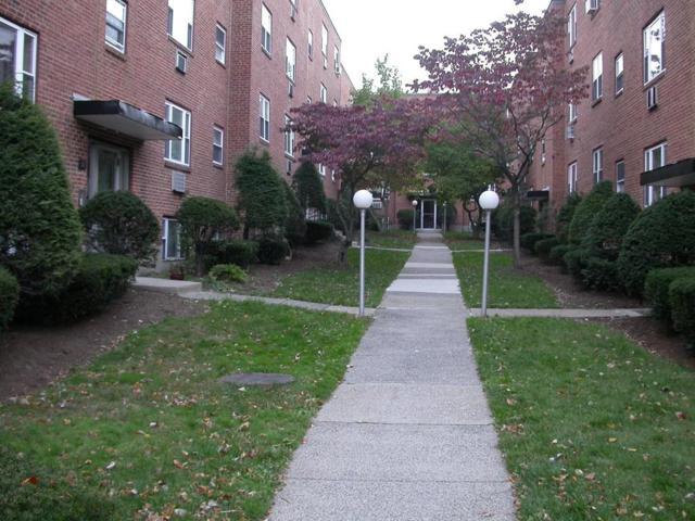 67 Colborne Rd #3, Boston, MA 02135 (MLS #72187322) :: Goodrich Residential