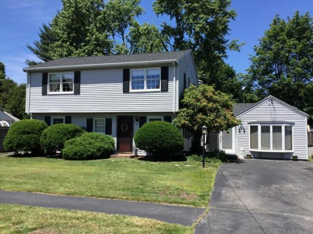 16 Anthony, Peabody, MA 01960 (MLS #72188052) :: Exit Realty
