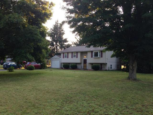 62 Breckenridge Rd, Hadley, MA 01035 (MLS #72215507) :: Westcott Properties