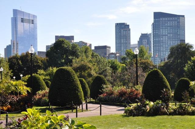 1 Avery St 30A, Boston, MA 02111 (MLS #72239849) :: Charlesgate Realty Group