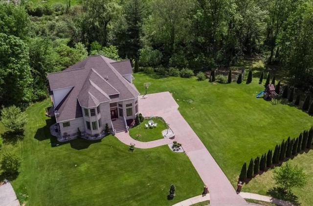 61 Appaloosa Ln, West Springfield, MA 01089 (MLS #72260805) :: NRG Real Estate Services, Inc.