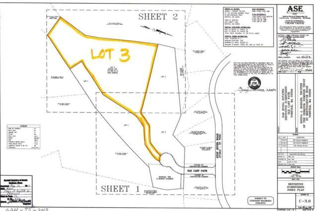 Lot 3 Old Cart Path, Norfolk, MA 02056 (MLS #72264155) :: Welchman Real Estate Group | Keller Williams Luxury International Division
