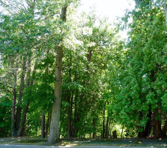 137 Cabot, Brookline, MA 02467 (MLS #72265773) :: Goodrich Residential
