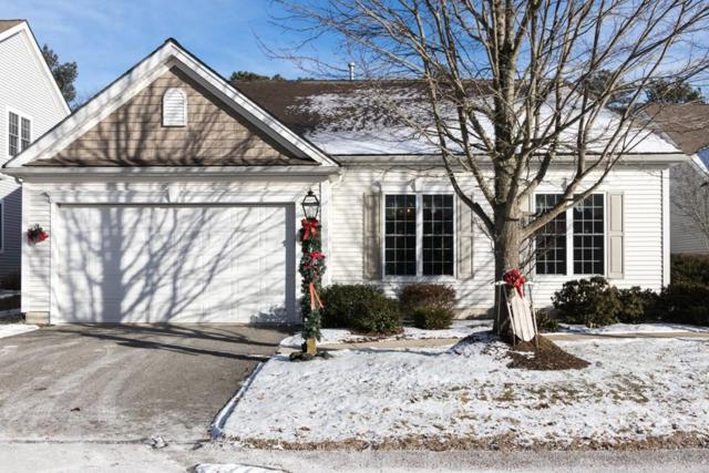 26 Webster Reach, Plymouth, MA 02360 (MLS #72268582) :: Driggin Realty Group