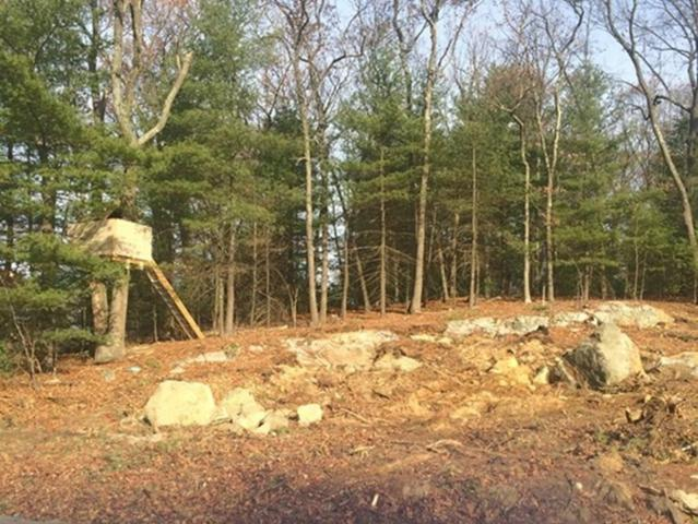 7A Kylie Lane, Natick, MA 01760 (MLS #72270015) :: Commonwealth Standard Realty Co.