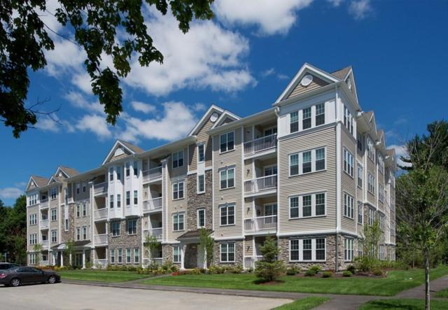 110 Trotter Road #401, Weymouth, MA 02190 (MLS #72280220) :: Goodrich Residential