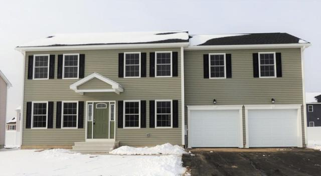 203 Morton St, Springfield, MA 01119 (MLS #72281070) :: Hergenrother Realty Group