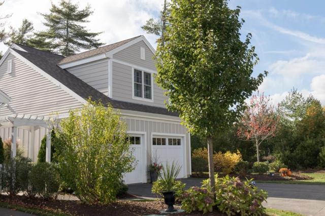 20 Trillium Rise #20, Plymouth, MA 02360 (MLS #72285014) :: Goodrich Residential