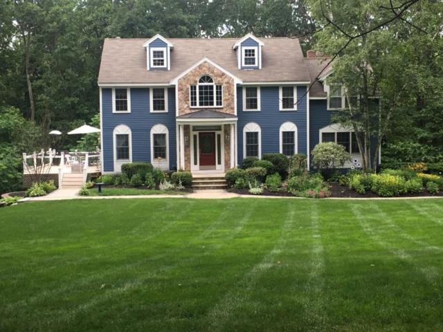 30 Brady Loop, Andover, MA 10108 (MLS #72285492) :: Westcott Properties