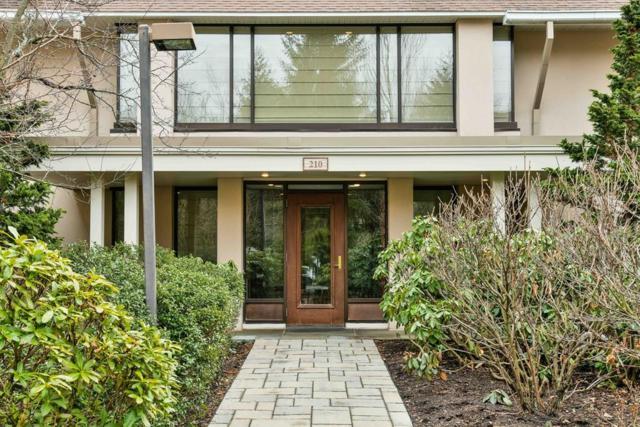 210 Allandale Rd 3A, Boston, MA 02130 (MLS #72292754) :: Westcott Properties