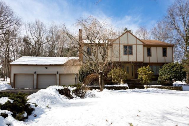 85 Hampton Road, Sharon, MA 02067 (MLS #72296519) :: ALANTE Real Estate