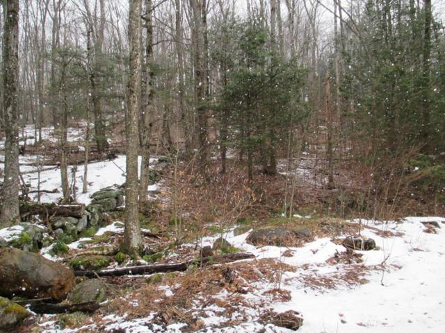 Lot 1 Betty Spring Rd, Gardner, MA 01440 (MLS #72303519) :: Exit Realty