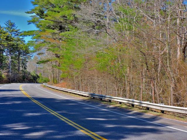 366 Tremont, Carver, MA 02330 (MLS #72306069) :: ALANTE Real Estate