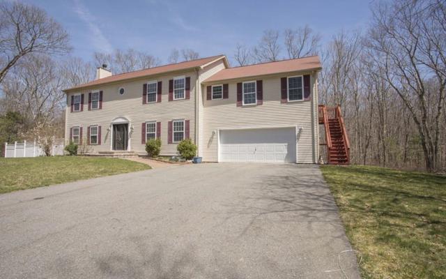 15 Francis St, Rehoboth, MA 02769 (MLS #72315209) :: Westcott Properties