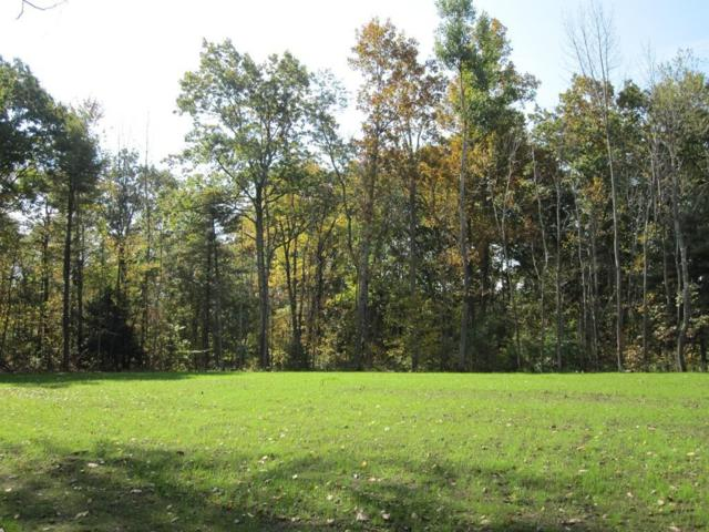 0 Sam Cobb Lane, Princeton, MA 01541 (MLS #72316682) :: Hergenrother Realty Group
