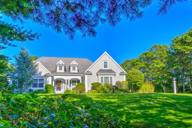 38 Saddleback, Falmouth, MA 02540 (MLS #72318341) :: ALANTE Real Estate