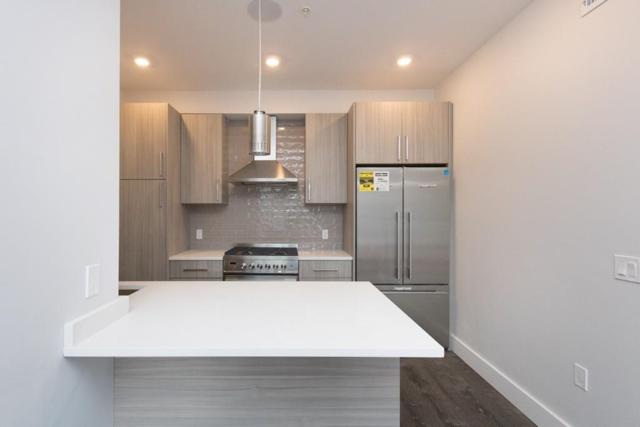 176 Humboldt Ave #8, Boston, MA 02121 (MLS #72326499) :: ALANTE Real Estate