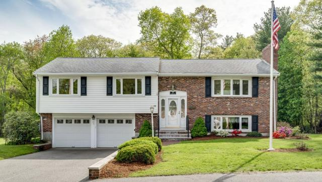 19 Heather Ln, Weymouth, MA 02190 (MLS #72330503) :: Hergenrother Realty Group