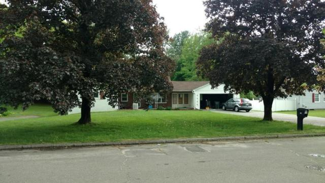 162 Patricia Cir, Springfield, MA 01119 (MLS #72331119) :: Vanguard Realty