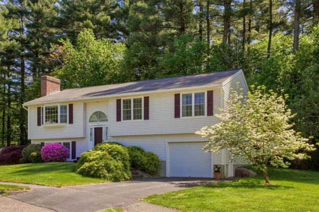 6 Cottonwood Cir, Shrewsbury, MA 01545 (MLS #72332432) :: Hergenrother Realty Group