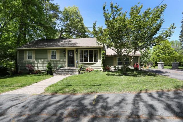 55 Lodi Road, Marlborough, MA 01752 (MLS #72332473) :: Hergenrother Realty Group