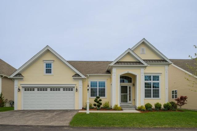 41 Skipping Stone, Plymouth, MA 02360 (MLS #72332716) :: ALANTE Real Estate