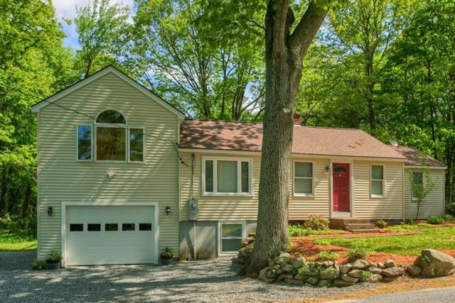 95 Hobbs Rd., Princeton, MA 01541 (MLS #72334267) :: Hergenrother Realty Group