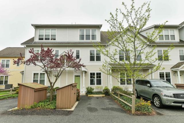 3 Lark Drive #104, Boston, MA 02126 (MLS #72334539) :: Driggin Realty Group