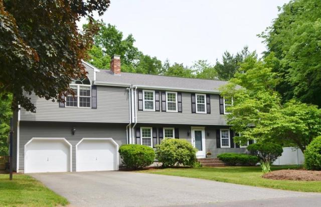 3 Meadow Lane, Mansfield, MA 02048 (MLS #72344779) :: Westcott Properties