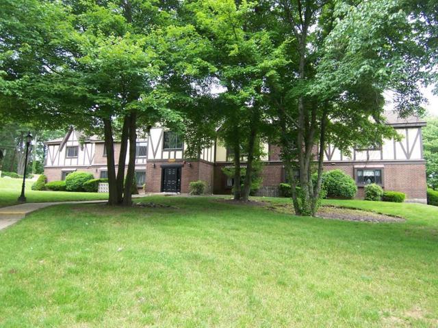 14 Royal Lake Drive #6, Braintree, MA 02184 (MLS #72347334) :: ALANTE Real Estate