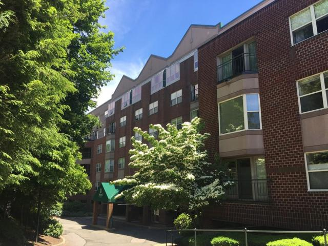 1 Watermill Place #212, Arlington, MA 02476 (MLS #72350086) :: Commonwealth Standard Realty Co.
