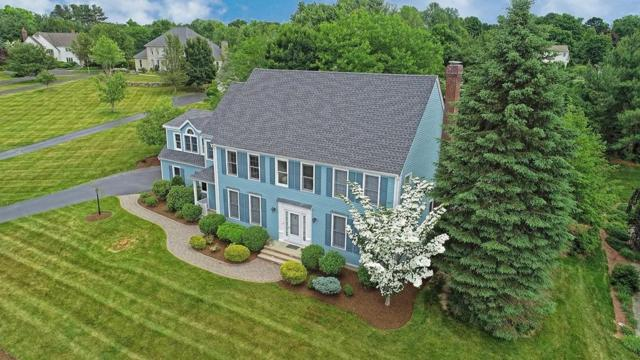 7 Brickyard Lane, Westborough, MA 01581 (MLS #72351727) :: Cobblestone Realty LLC
