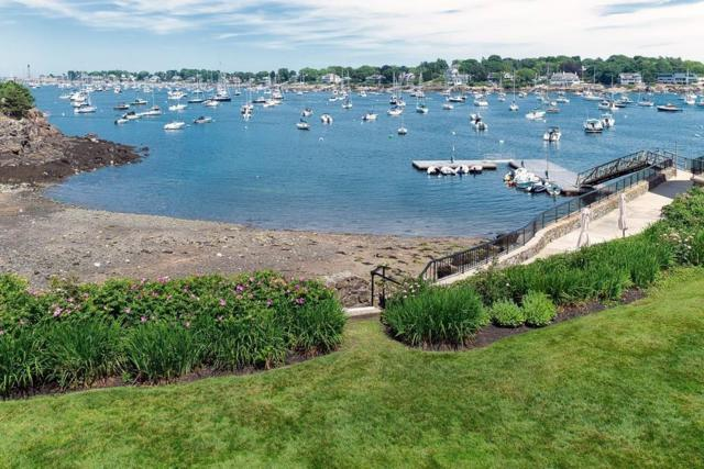 34A Constitution Way 34A, Marblehead, MA 01945 (MLS #72352344) :: Charlesgate Realty Group