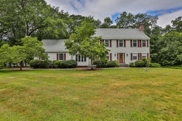 28 Colleen Drive, Salem, NH 03079 (MLS #72355654) :: The Muncey Group