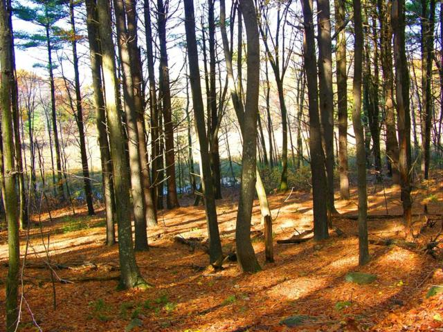 0 Under Pin Hill Road, Harvard, MA 01451 (MLS #72360025) :: Exit Realty