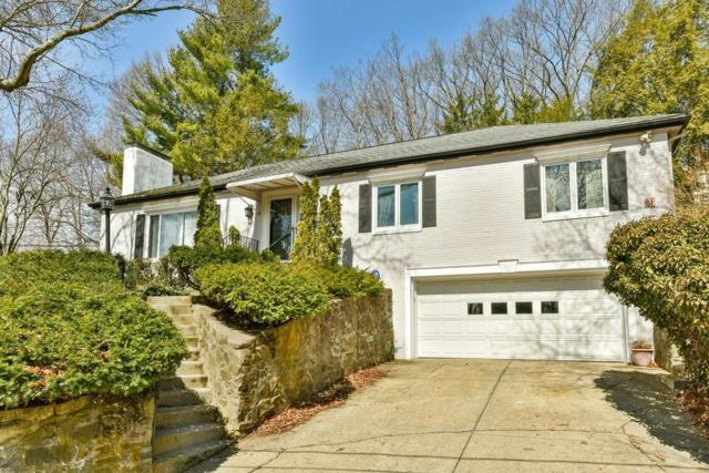 61 Lakeview Avenue, Newton, MA 02460 (MLS #72361805) :: The Gillach Group