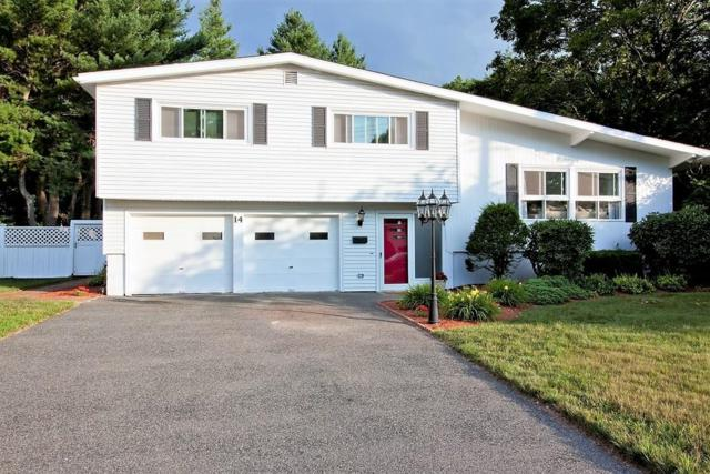14 Berkeley Rd, Framingham, MA 01701 (MLS #72362600) :: Local Property Shop