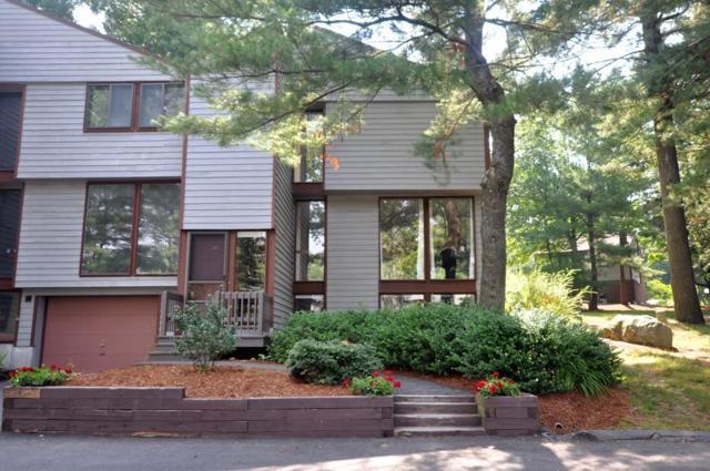217 Meadows Edge #187, Acton, MA 01718 (MLS #72364817) :: Westcott Properties