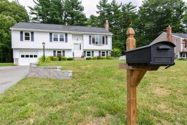 25 Dorchester St, Wilmington, MA 01887 (MLS #72368565) :: EdVantage Home Group